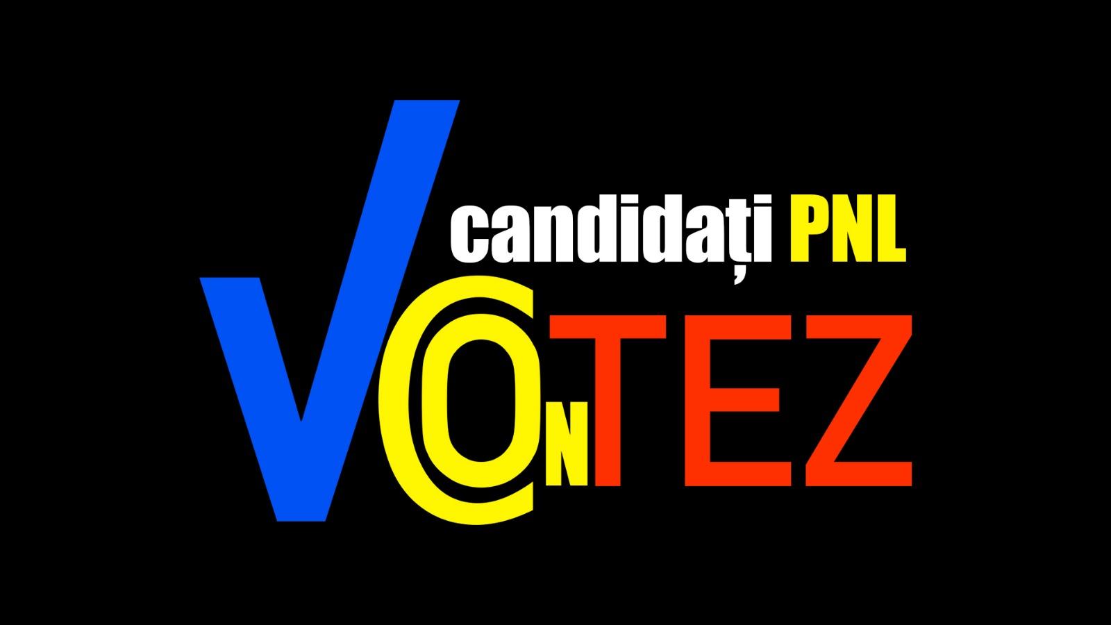 Cine candidează, de fapt, din partea PNL la Alegerile Parlamentare din 2020. Ei sunt deputații și senatorii