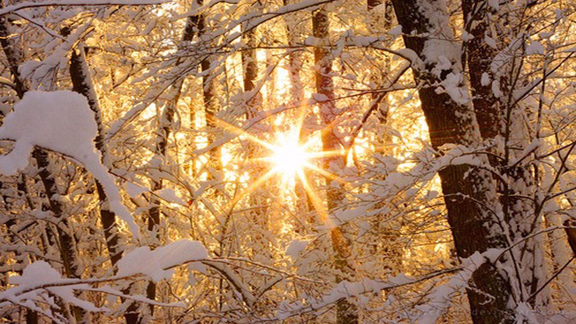 Prognoza meteo 25 decembrie. Crăciun cu temperaturi de primăvară
