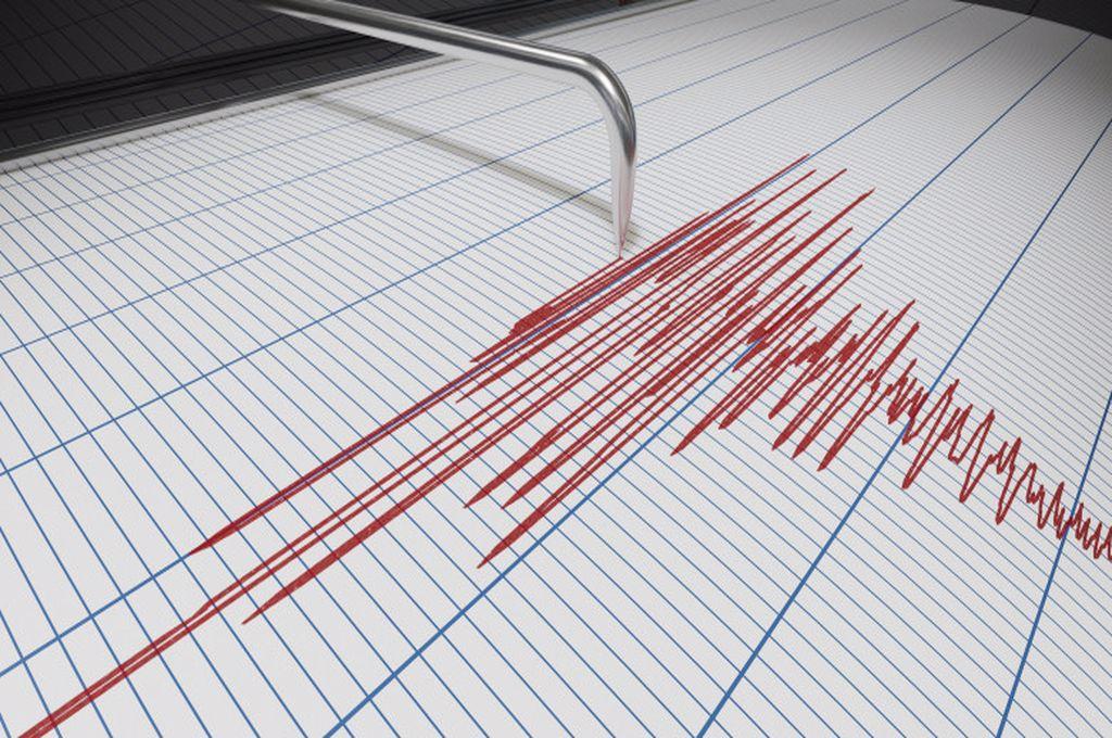 Cutremur cu magnitudinea de 7 în Japonia. Informații despre teribilul incident