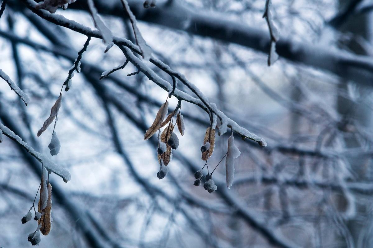 Atenționare meteo de ger cumplit! Cum va fi vremea marți, 16 februarie