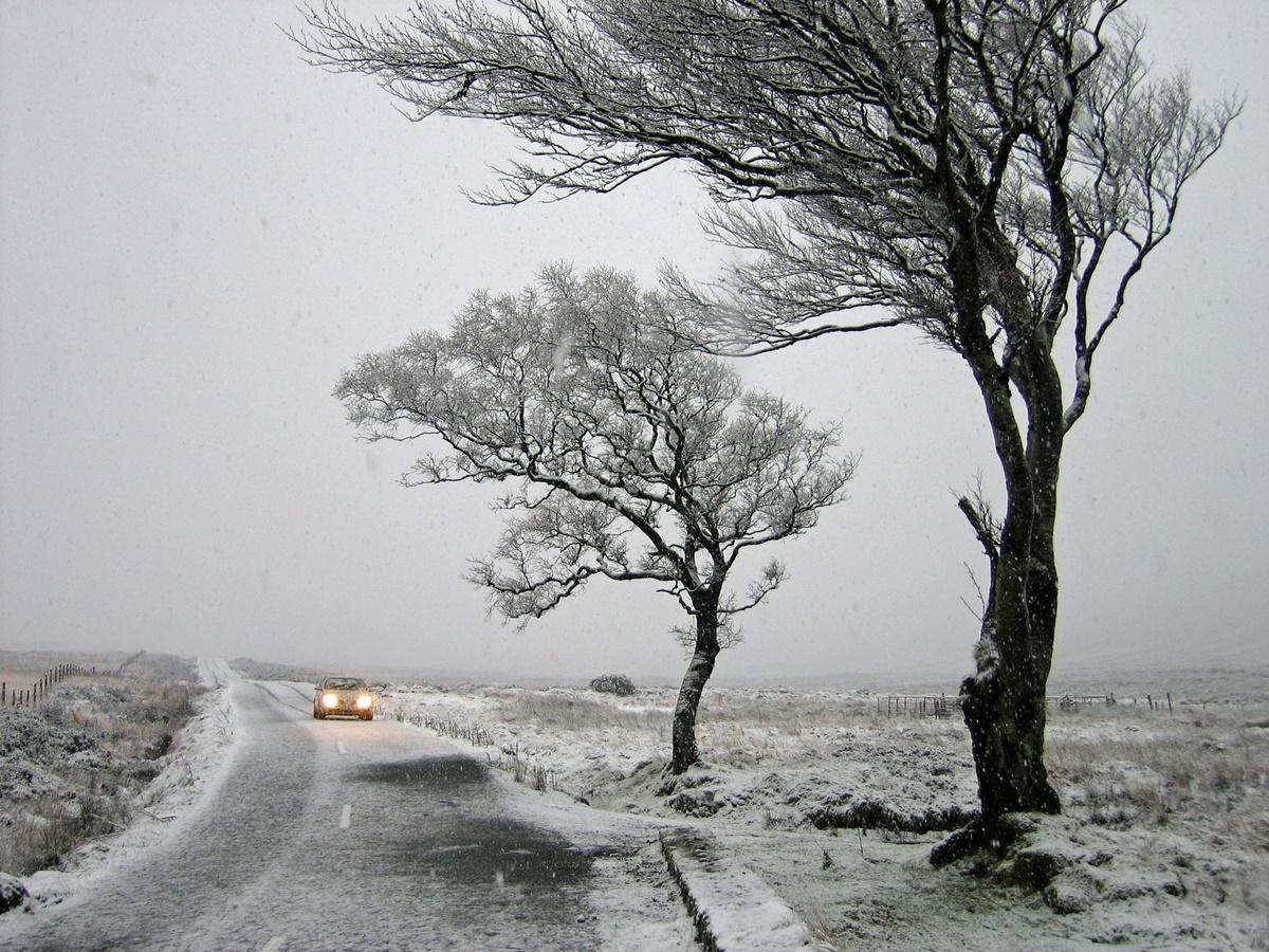 Cod galben de vânt puternic! Zăpadă spulberată și vizibilitate redusă în două județe din țară