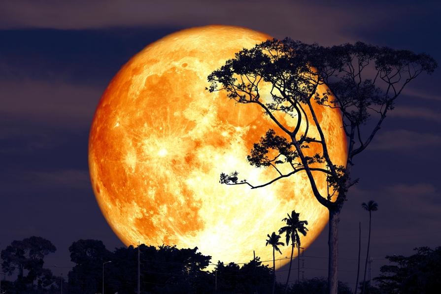 Lună Plină pe 28 martie. Ce să faci în timpul acestui fenomen astrologic pentru a avea noroc