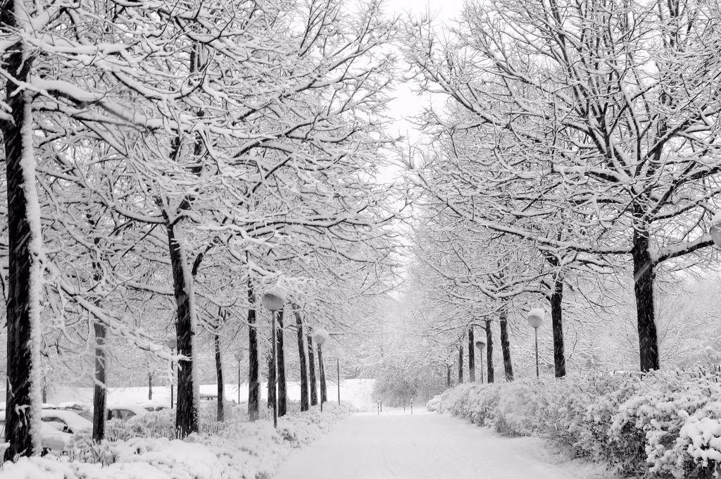 Vreme rea continuă în toată România! Temperaturi extrem de scăzute