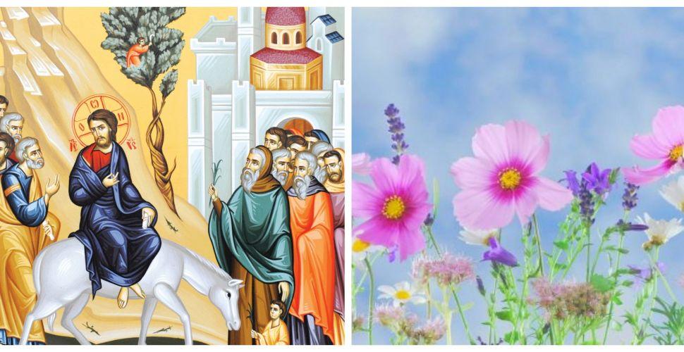 Calendar ortodox 25 aprilie 2021. Semnificația Floriilor